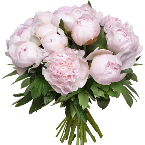 Au Coin De Ma Rue Courses En Ligne Brassee De Pivoines Roses